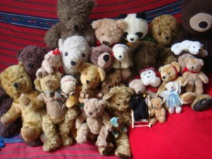 Olivia Schofield's bears collection